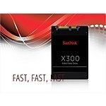 Sandisk X300 256GB SSD $86 @NeweggFlash